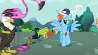 Rainbow Dash's Speech S2E7