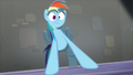 Rainbow Dash shocked S5E15.png