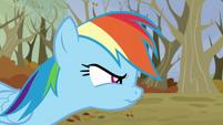 Rainbow angry S5E5