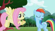 S02E07 Wybredna Rainbow