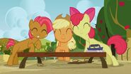 S03E09 Uśmiechnięte Babs Seed, Applejack i Apple Bloom