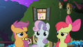 The CMC outside of Fluttershy's cottage S1E17.png