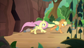 AJ and Fluttershy return with foal's-breath S8E23.png