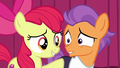 "Apple Bloom ""we can go on together!"" S6E4.png"