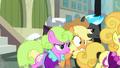Applejack overwhelmed by Manehattan ponies S5E16.png
