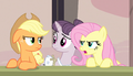 "Fluttershy ""almost as bad as Rainbow Dash"" S5E1.png"
