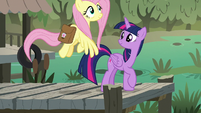 Fluttershy flies toward Meadowbrook's house S7E20