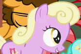 Luckette filly ID S4E12