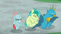 Ocellus, Sandbar, and Gallus land outside S8E21