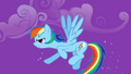 Rainbow Dash at the ready S1E06.png
