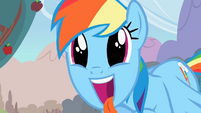 Rainbow Dash excited S02E15