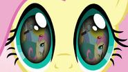 S03E13 Wspomnienia Fluttershy