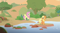 AJ and Fluttershy crossing a stream S8E23
