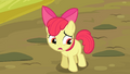 Apple Bloom '...the map got all wet' S4E09.png