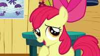 Apple Bloom 'A bunny-sitting cutie mark' S3E11