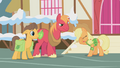 Applejack facehoof S1E11.png