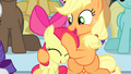 Applejack giving Apple Bloom a noogie S4E24.png