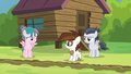 Camper filly grinning nervously at Rumble S7E21.png