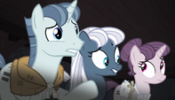 Party Favor, Night Glider, and Sugar Belle unsure S5E1