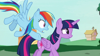 "Rainbow Dash ""you saw her mane, right?"" S7E19"