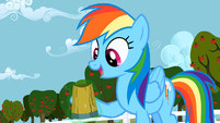 Rainbow Dash all right S2E15