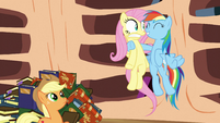 Rainbow Dash tries to encourage Fluttershy S3E05