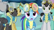 S3E07 Rainbow Dash zawiedziona