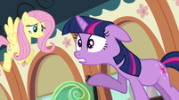 Twilight and Fluttershy on the train S03E12