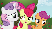 "Apple Bloom ""can a griffon even get a cutie mark?"" S6E19"