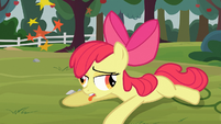 Apple Bloom seeing stars S03E08