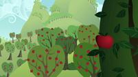 Apple Farm in imagine spot 1 S2E17