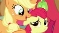 "Applejack ""just like you, sugarcube!"" S7E13.png"