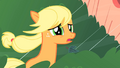 Applejack apologizing to Twilight S1E08.png