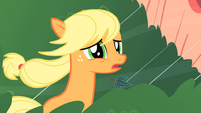 Applejack apologizing to Twilight S1E08