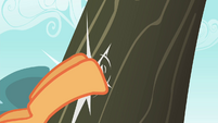 Applejack kicks a tree S4E20