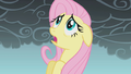 Fluttershy frightened mid-flight S1E07.png