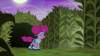 Pinkie Pie running in disgust S5E21