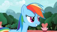 Rainbow Dash 'that will put' S2E07