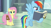 Rainbow Dash -destruction of temples- S9E21