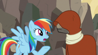 Rainbow Dash -if Ahuizotl had gotten away- S7E18