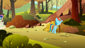 Rainbow Dash changing signs S1E13.png