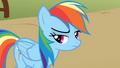 Rainbow Dash losing S1E13.png