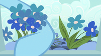 Rainbow Dash picks flowers covered in pollen S7E23