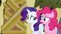 Rarity is she serious S2E19