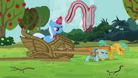 S03E05 Trixie pośpiesza ciągnące wóz źrebaki