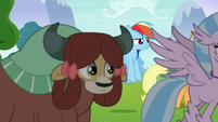 Silverstream and Yona follow Applejack S8E9