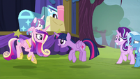 Twilight and Cadance -sunshine, sunshine- S8E19