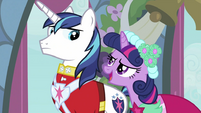 Twilight talking to Shining Armor S2E26