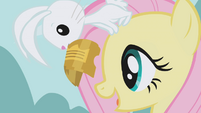 Angel holds the tickets in front of Fluttershy S1E03