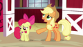 """Applejack """"why would anypony want to win"""" S6E14.png"""
